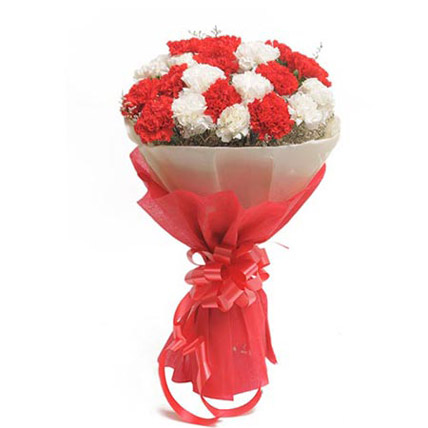 Red & White Carnation Bunch  cake delivery Delhi