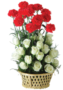 Arrangement of 20 white roses and 10 red Carnation cake delivery Delhi