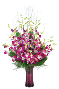 10 Orchids in a Vase cake delivery Delhi