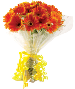 Bunch of 20 Gerberas cake delivery Delhi