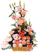 Lilly, Carnations beautifully arranged in a basket with a cute teddy cake delivery Delhi