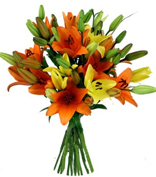 Exotic bunch of mix Asiatic Lillium cake delivery Delhi