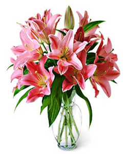 Oriental Lilliums in a glass vase cake delivery Delhi