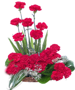 Basket of 20 Carnations cake delivery Delhi