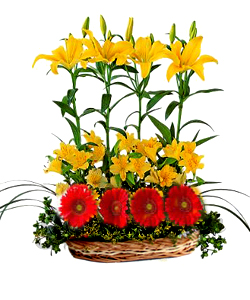 Basket of Lillium and Gerbera cake delivery Delhi