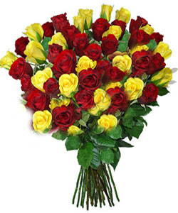 Hand Bunch of 50 Mix Roses cake delivery Delhi
