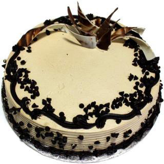 Choco Chip Cream Cake Delivery Delhi