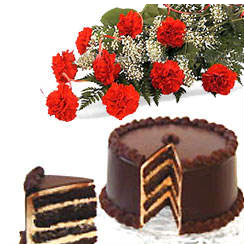 A bunch of 12 carnation with 1 kg Chocolate Cake cake delivery Delhi